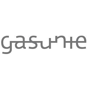partner Gasunie