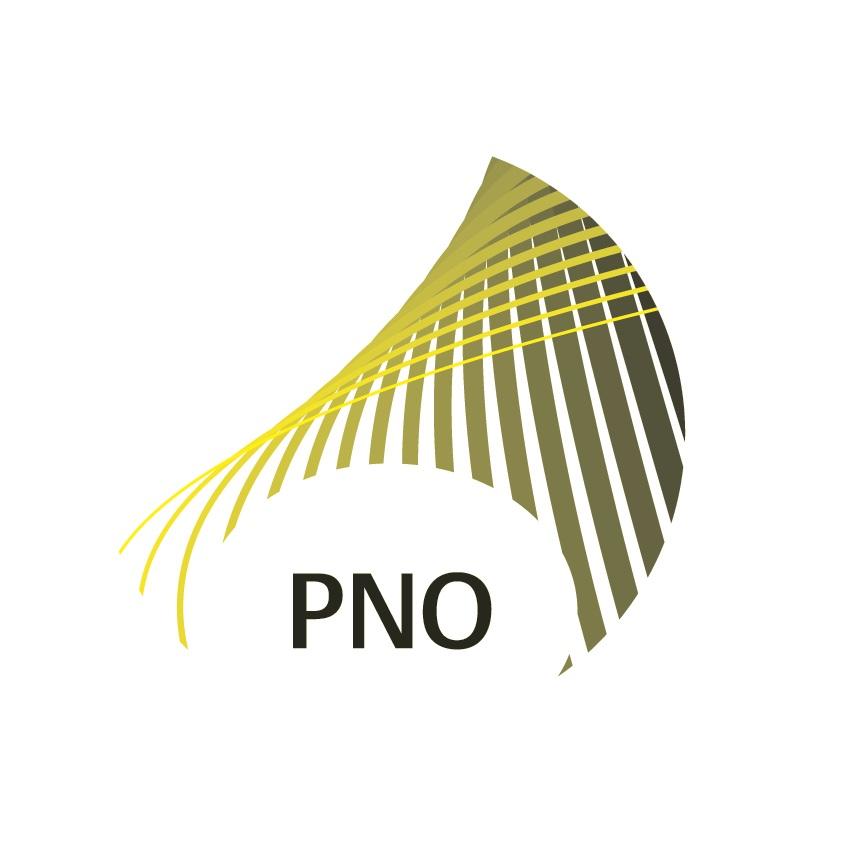 partner PNO Consultants