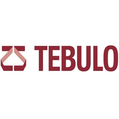 partner Tebulo Engineering